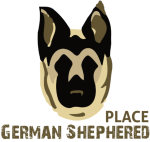 German Shephered